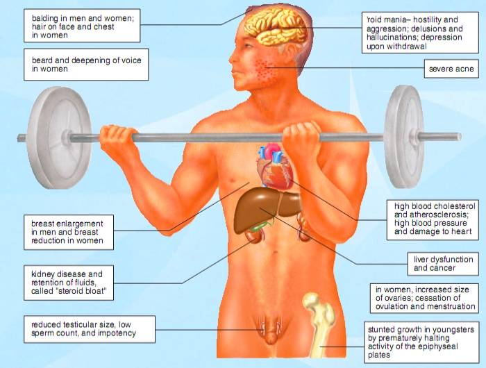 Side Effects Of Anabolic Steroids | MEDCHROME