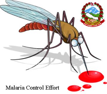 Mosquito and blood
