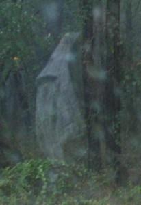 Woods_Ghost101606b