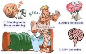 sleepwalking theories