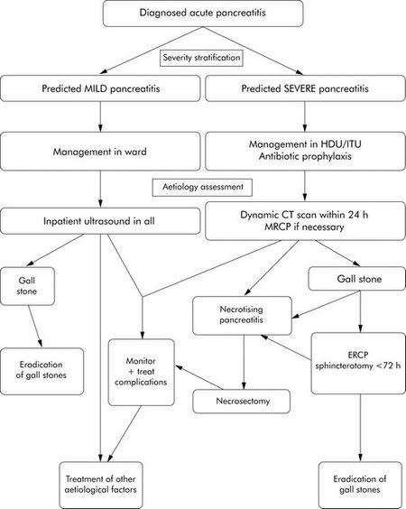 Algorithm acute pancreatitis management A Review Of Acute Pancreatitis
