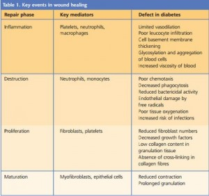 DM wound healing stages