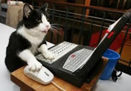 internet patient