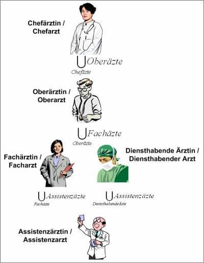 hierarchy-doctor-german